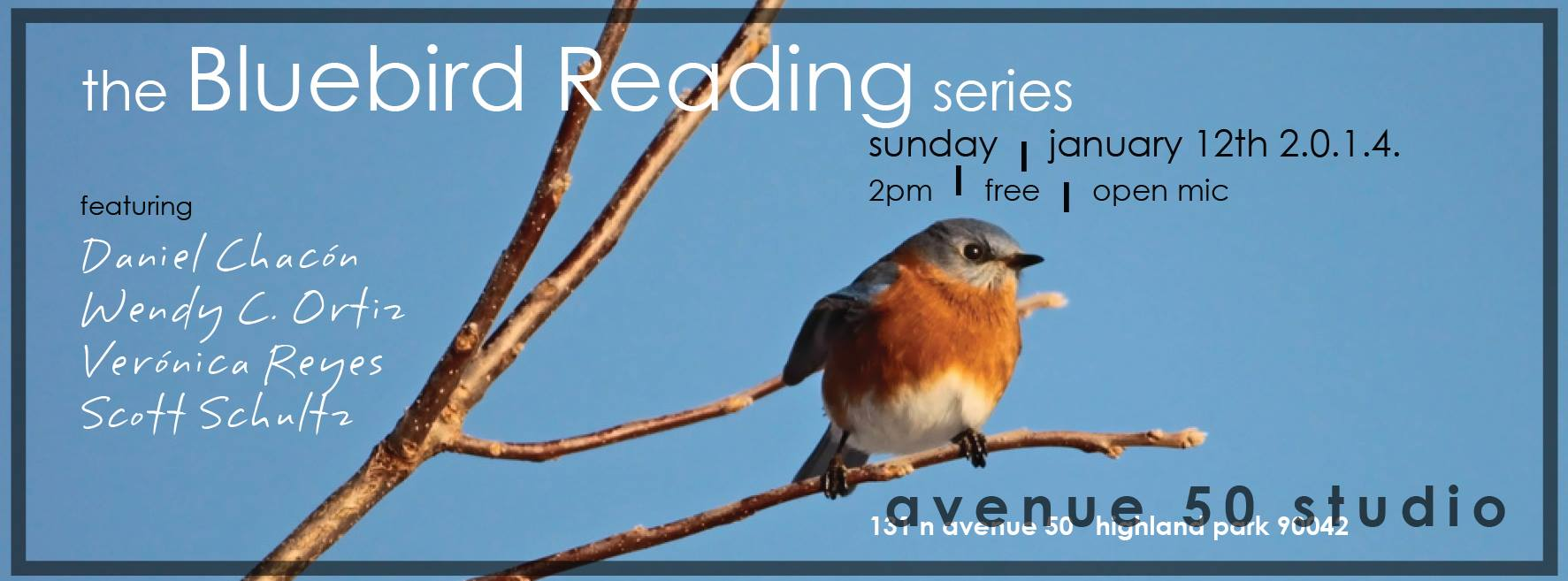 Bluebird reading series avenue 50 studio feb 9 bluebird 152335410152124256461054176618325o biocorpaavc